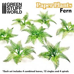 Plantes à papier - Fougère
