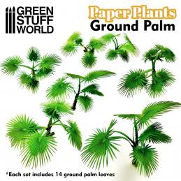 Papierpflanzen - Grundpalme