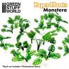 Papierpflanzen - Monstera