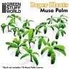 Paper Plants - Musa Trees