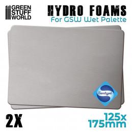 Hidro esponjas x2