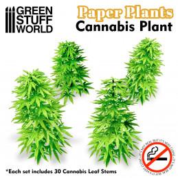Papierpflanzen - Cannabis