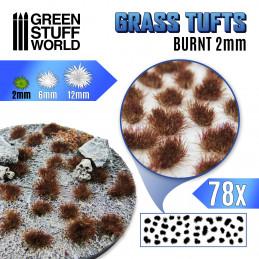 Touffes d'herbe - 2mm - Auto-Adhésif - Brûlée